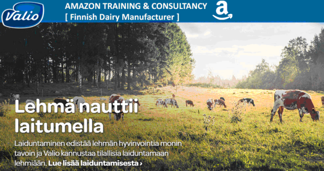 Amazon Training for International Businesses