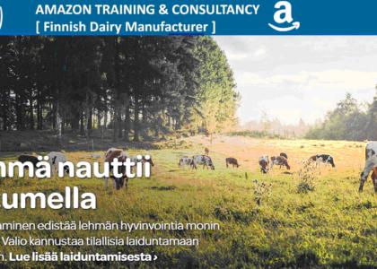 Amazon Training for International Businesses