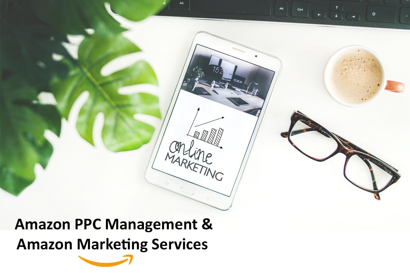 Amazon PPC Management Amazon Marketing Services -Daytodayebay